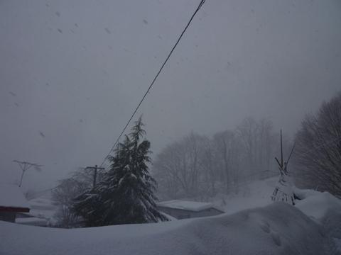 吹雪の日会社前