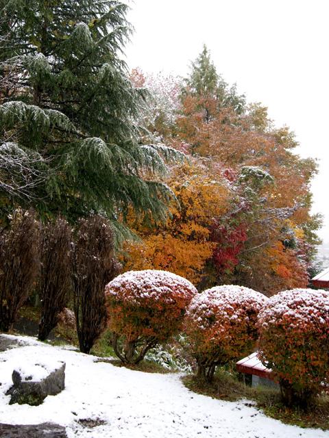 角館初雪3